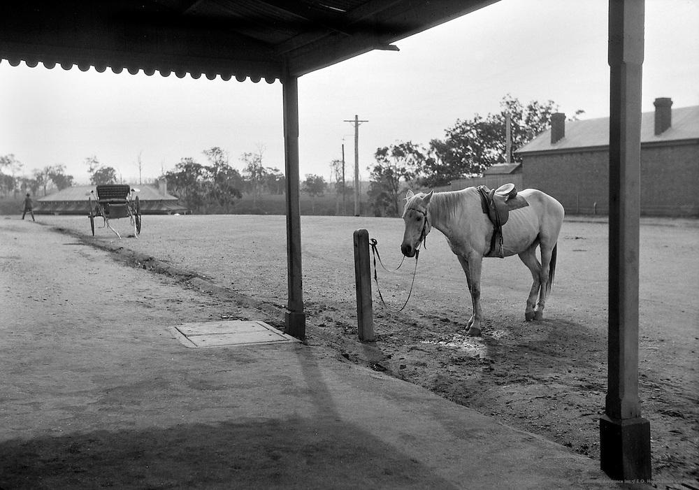 Marlo, Typical Australian Town, Victoria, Australia, 1930