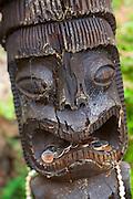 Tiki, Kula Botanical Garden, Upcountry, Maui, Hawaii