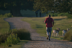 © Licensed to London News Pictures. 25/06/2020. London, UK. A man jogging in the warm conditions in the early morning at Richmond Park in west London. Record temperatures are expected this week as the UK starts to relax lockdown restrictions, introduced earlier this year to prevent the spread of COVID-19.<br /> Photo credit: Marcin Nowak/LNP