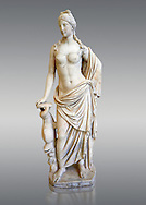 2nd - 1st century BC Roman marble sculpture of Aphrodite (Venus), 'Marine Venus' Type with a dolphin, copied from a Hellanistic Greek original,  inv 6296, Museum of Archaeology, Italy, grey background.<br /> <br /> If you prefer to buy from our ALAMY STOCK LIBRARY page at https://www.alamy.com/portfolio/paul-williams-funkystock/greco-roman-sculptures.html . Type -    Naples    - into LOWER SEARCH WITHIN GALLERY box - Refine search by adding a subject, place, background colour, etc.<br /> <br /> Visit our ROMAN WORLD PHOTO COLLECTIONS for more photos to download or buy as wall art prints https://funkystock.photoshelter.com/gallery-collection/The-Romans-Art-Artefacts-Antiquities-Historic-Sites-Pictures-Images/C0000r2uLJJo9_s0