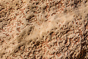 Popcorn sandstone pattern in Bell Canyon. Hike a classic loop from Little Wild Horse Canyon to Bell Canyon, in the San Rafael Reef, Utah, USA. This great walk (an 8.6-mile circuit with 900 feet gain) is a short drive on a paved road from Goblin Valley State Park. The hike via fascinating narrow slot canyons and open mesas requires some scrambling over rocks, possibly through shallow water holes (which were dry for us on Sept 20, 2020 but wet in April 2006). Thanks to the greatest legislative victory in the history of SUWA (Southern Utah Wilderness Alliance), in 2019, Congress passed the Emery County Public Land Management Act, which declared 663,000 acres of wilderness, including Little Wild Horse Canyon Wilderness, in San Rafael Swell Recreation Area, Utah, USA. The Navajo and Wingate sandstone of the San Rafael Reef was uplifted fifty million years ago into a striking bluff which now runs from Price to Hanksville, bisected by Interstate 70 at a breach fifteen miles west of the town of Green River.