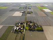 Nederland, Flevoland, Noordoostpolder, 16-04-2012; Ankerpad, met bloembollenvelden en akkers die op het punt van bloeien staan. Boerderijen en kavels op regelmatige onderlinge afstand, voorbeeld van moderne grootschalige polder met rationele verkaveling. De aanleg van de polder maakte deel uit van de Zuiderzeewerken (plan Lely) en viel in 1942 droog. De meeste boerderijen (en dorpen) zijn van na de tweede wereldoorlog. The northeast polder (NOP), is an example of modern large-scale polder with rational allotment. The construction of the polder was part of the Zuiderzee Works (Lely plan), in 1942 the polder was dry. Most of the building, farmhouses and villages, is post-war...QQQ.luchtfoto (toeslag), aerial photo (additional fee required).foto/photo Siebe Swart