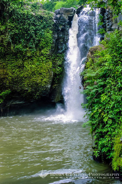Bali, Gianyar, Tegenungan Waterfall. A very scenic place close to Kemenuh. You can swim in the pool in front of the waterfall, the water is supposed to have magical powers.