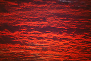 An evening sky with red clouds.