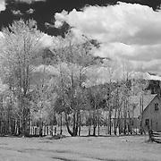 Mormon Row Homestead Wide - Grand Tetons, WY - Infrared Black & White
