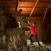 Emery, left, and Jade Jonas stack bales of hay into a barn at Goat Milk Stuff in Scottsburg, Indiana. Nathan Lambrecht/Journal Communications