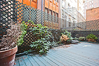 Garden at 17 East 70th Street