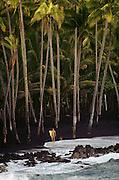 Surfer on volcanic black sand Kaimu Beach, Big Island, Hawaii. USA.