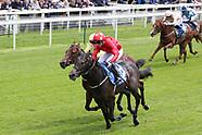 Horse Racing Midsummer Raceday York Racecourse 140619