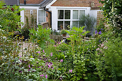 Seating area by the house surrounded by flowering borders