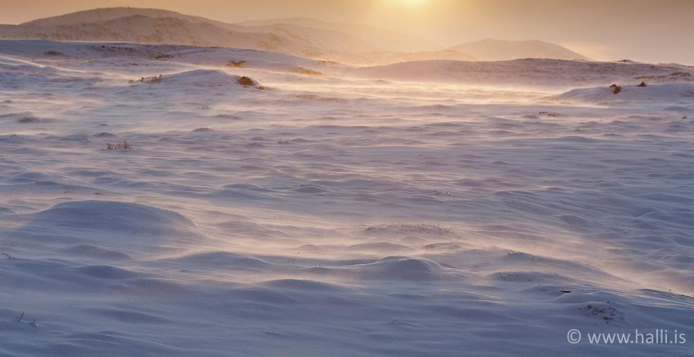 Snow storm at Mosfellsheidi, Iceland - Snjóstormur á Mosfellsheiði