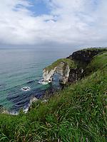 Northern Ireland coastline