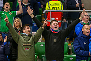 Northern Ireland fans celebrate at full time during the UEFA European 2020 Qualifier match between Northern Ireland and Estonia at National Football Stadium, Windsor Park, Northern Ireland on 21 March 2019.
