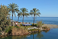 Shoreline, coast, sea, palms, palm trees, between Puerto Banus & San Pedro de Alcantara, Costa del Sol, Spain, 201212081061..Copyright Image from Victor Patterson, 54 Dorchester Park, Belfast, UK, BT9 6RJ..Tel: +44 28 9066 1296.Mob: +44 7802 353836.Voicemail +44 20 8816 7153.Skype: victorpattersonbelfast.Email: victorpatterson@me.com.Email: victorpatterson@ireland.com (back-up)..IMPORTANT: If you wish to use this image or any other of my images please go to www.victorpatterson.com and click on the Terms & Conditions. Then contact me by email or phone with the reference number(s) of the image(s) concerned.