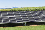 solar panel energy source in sugar cane field in Bloomsbury, Queensland, Australia <br /> <br /> Editions:- Open Edition Print / Stock Image
