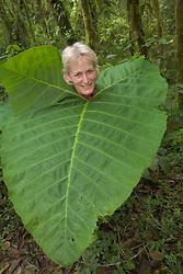 Woman in cloudforest with huge leaf around neck, Sachatamia Lodge, Mindo, Pichincha province, Ecuador, South America.  PR, MR