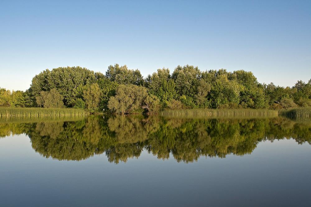 Landscape of Tisza lake, Hortobagy National Park, Hungary