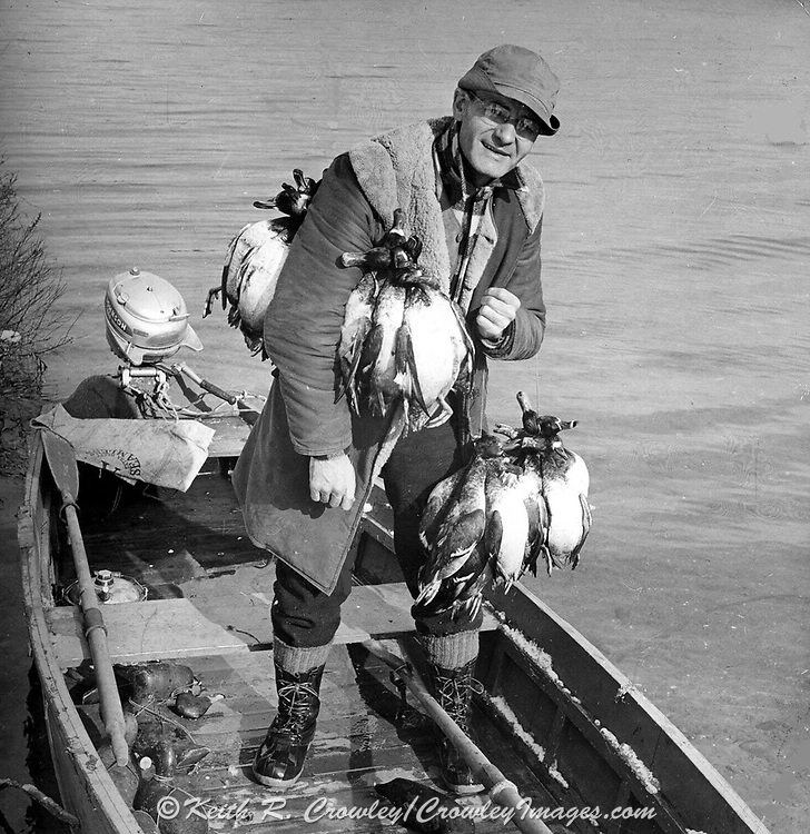 Gordon MacQuarrie friend Pat Tierney carrying bluebills after a late season duck hunt at Hole-in-the-Wall, 1942.
