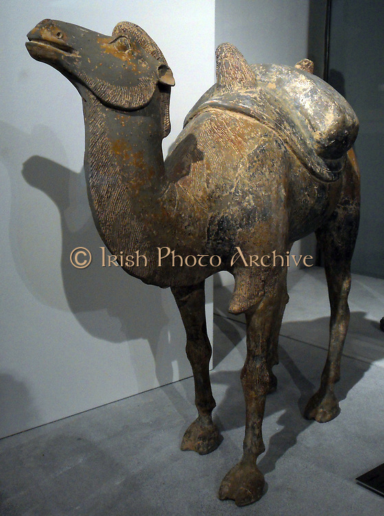 Bactrian camel. Sui dynasty (581-618 AD), Tang dynasty (618-907 AD), terracotta. Chinese