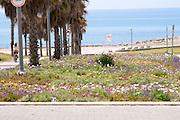 Israel, Jaffa, footpath to the beach