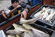 20120527/ Nicolas Celaya - adhocFOTOS/ URUGUAY/ MALDONADO/ PIRIAPOLIS/ Pescadores artesanales de Piriapolis durante una jornada de trabajo.  <br /> En la foto: Pescadores artesanales de Piriapolis durante una jornada de trabajo. Foto: Nicolás Celaya /adhocFOTOS