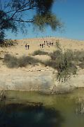 Israel, Negev plains, Nitzana a water spring
