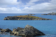Green Island, Bermuda adjacent to Nonsuch Island, and a Bermuda Petrel breeding islet