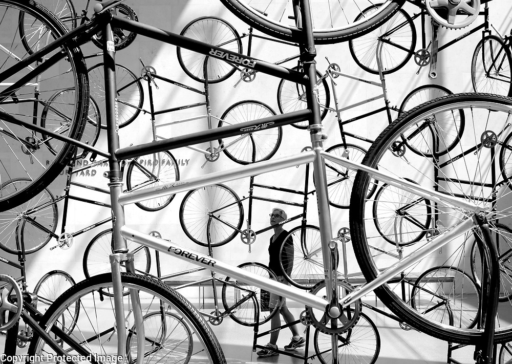 """Ai Weiwei's recently installed """"Forever"""" bike sculpture dominates an light-filled space at Boston, Museum of Fine Arts.<br /> Photo by Shmuel Thaler <br /> shmuel_thaler@yahoo.com www.shmuelthaler.com"""