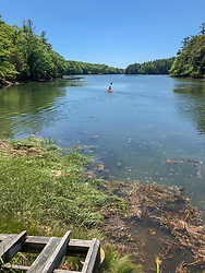 Colin Eimers Kayaking Out To Oyster Trays, Sasanoa River