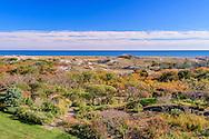 Beach and Dunes, East Hampton, NY