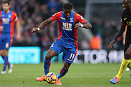 Wilfried Zaha of Crystal Palace in action. Premier League match, Crystal Palace v Manchester city at Selhurst Park in London on Saturday 19th November 2016. pic by John Patrick Fletcher, Andrew Orchard sports photography.