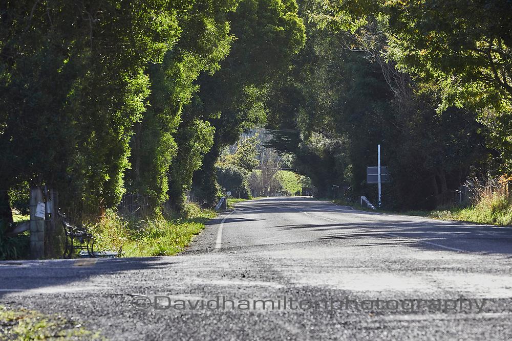 Otaki Gorge, Rural road, New Zealand