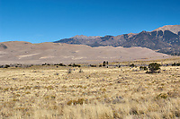 Great Sand Dunes National Park. Panorama (5 of 7). Image taken with a Nikon D2xs camera and 17-35 mm f/2.8 zoom lens (ISO 100, 35 mm, f/11, 1/125 sec).