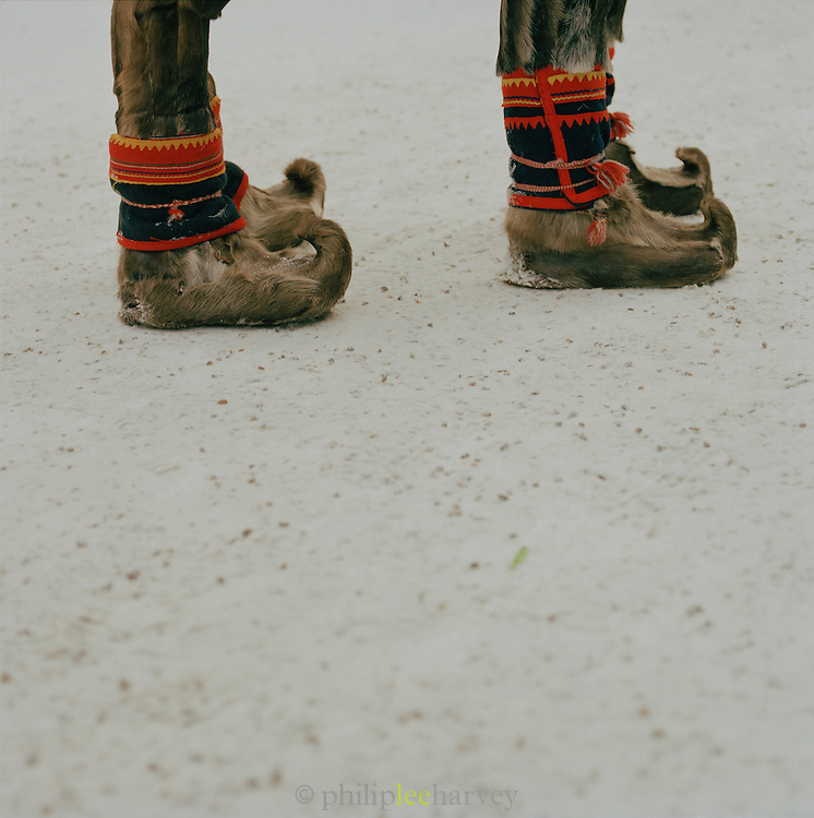 Sami boots made from reindeer skin, Lapland, Sweden