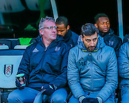 Tim Flowers of Fulham during the Sky Bet Championship match at Craven Cottage, London<br /> Picture by Richard Brooks/Focus Images Ltd 07947656233<br /> 02/01/2017