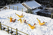 Monks Exercise In Snow