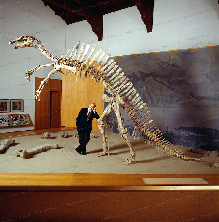 Venetian entrepreneur and dinosaur expediton leader Giancarlo Ligabue with Ouranosaurus, a herbivorous sail-backed dinosaur excavated from the Sahara Desert of Niger on a joint campaign with Philippe Taquet.