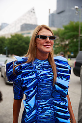 September 12, 2018 - New York, New York, United States - Anna Dello Russo attends the Coach 1941 Runway Show during New York Fashion Week at Pier 94 on September 11, 2018 in New York City. (Credit Image: © Oleg Chebotarev/NurPhoto/ZUMA Press)