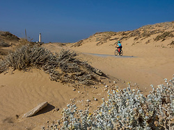 Rear view of woman cycling on road by sand dune