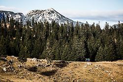 Trekking in mountains, on December 2, 2016 in Velika Planina, Slovenia. Photo by Vid Ponikvar / Sportida