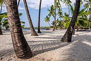 We stayed in Kona the first night and walked through the Pu'uhonua O Honaunau National Historical Park on our way down to the National park.