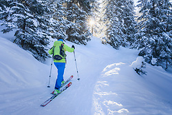 Woman ski touring in forest, Bavaria, Germany