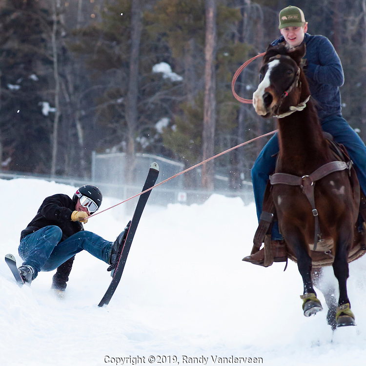 Photo Randy Vanderveen<br /> 2019-03-08<br /> Grande Prairie, Alberta<br /> Chad Cooper takes a fall but bounces back up again as hee is pulled by Bunny ridden by Ryan Collett at Thunder in the Pines at Evergreen Park Friday evening. The inaugural skijoring event, which saw someone on skis or a snowboard pulled around by a horse or horse and rider on a closed course proved a popular event at the Foster's Peace Country Ag Classic for both spectators and participants.