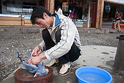 Mo Suo minority man prepares a blue chicken outside his restaurant on Lugu Lake, Yunnan province. This is a basic, undeveloped area where tourists that are attracted to the area must be prepared for basics.