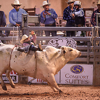 Rozel Nobles being bucked off a bull at Wild Thing 25th Annual Championship Bull Riding competition at Red Rock Park, July 14.
