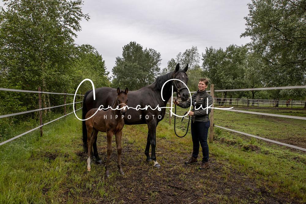 Goossens Els, Gloria, veulen Verano AS (Picasso vd Bruel)<br /> Alfa Stables - Tessenderlo 2021<br /> © Hippo Foto - Dirk Caremans<br /> 23/06/2021