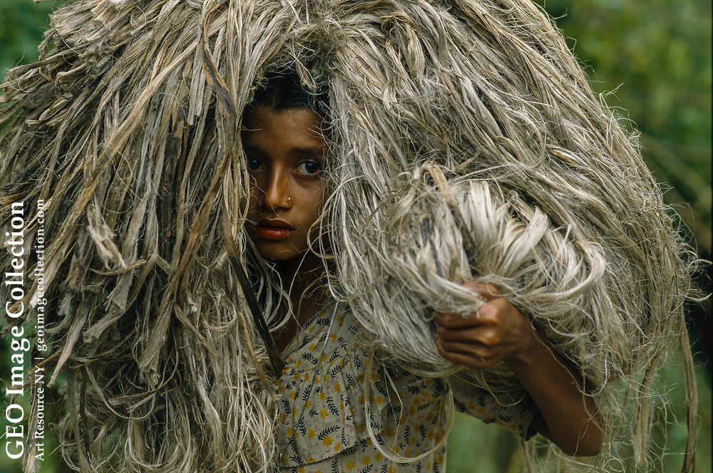 A young girl balances a load of jute on her head.