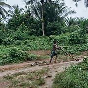 Kwesi Nkran is a cocoa farming community in the Western Region.