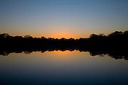 Aquidauana_MS, Brasil...Mata ciliar de um rio na fazenda Rio Negro no Pantanal...A river riparian in Rio Negro farm in the Pantanal...Foto: JOAO MARCOS ROSA / NITRO