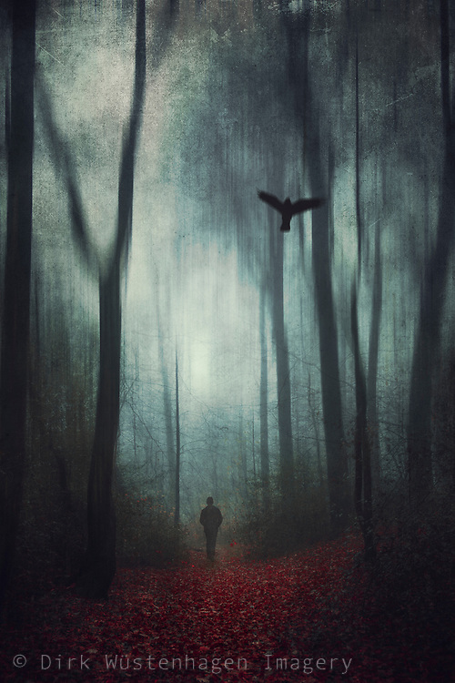 man on a forest path